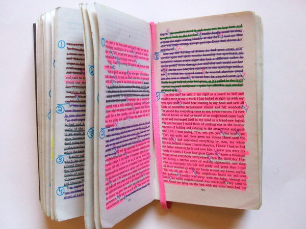 highlighted_book_1.jpg