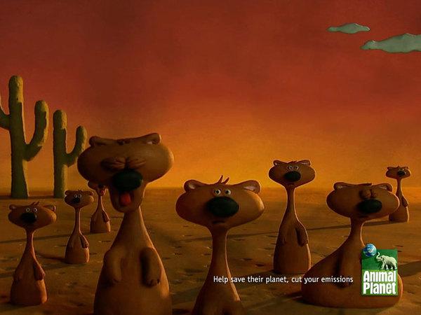 meerkats_800x600.jpg