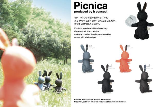 picnica2.jpg