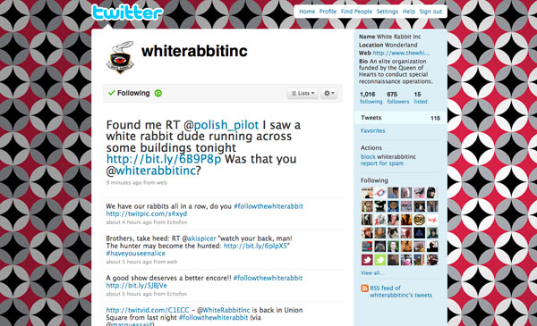 whiterabbit6.jpg