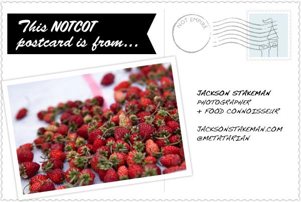 postcardBack_jackson.jpg