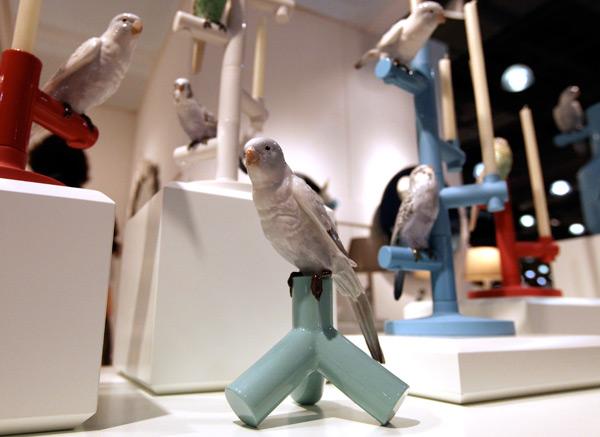 lladrobirds3.jpg