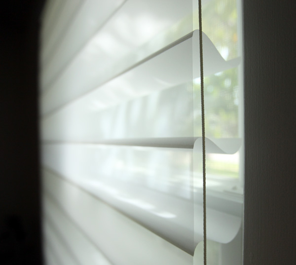 blinds-shade2.jpg