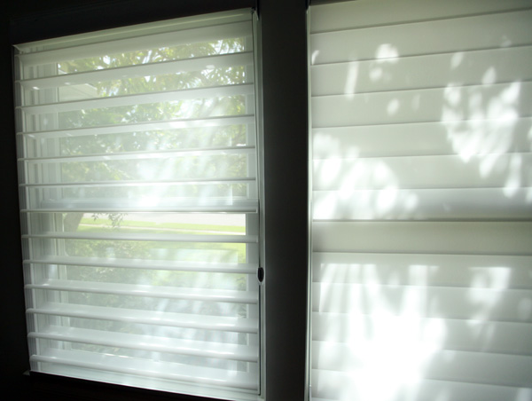 blinds-shade4.jpg