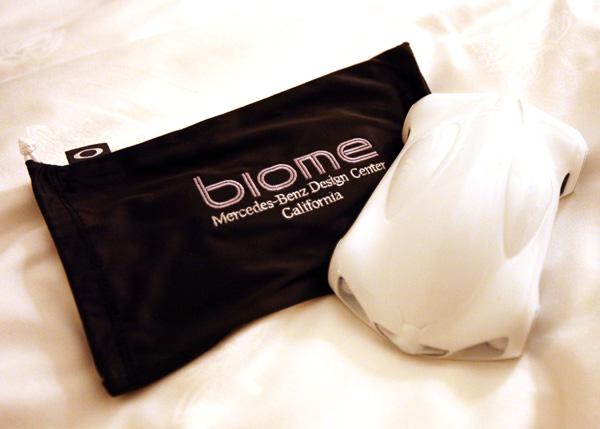 biome22.jpg