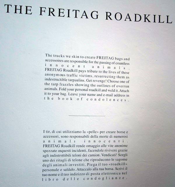 roadkill5.jpg