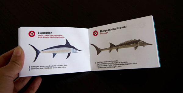 fishguide5swordfishsturgeon.jpg