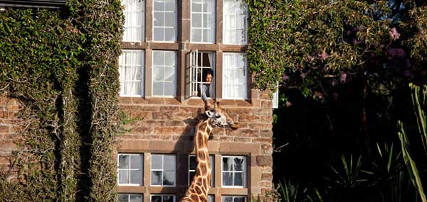 giraffe-manor-surrounding4.jpg
