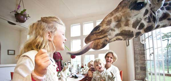 giraffeattable.jpg