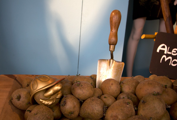 potato3.jpg