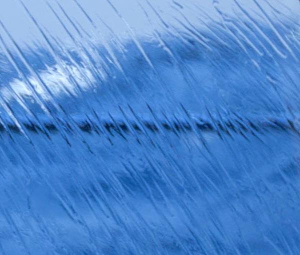 wet3.jpg