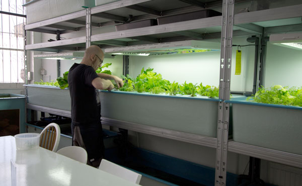 8-farmshopfrontroomharvest.jpg