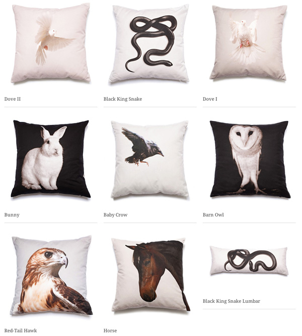 pillow7.jpg