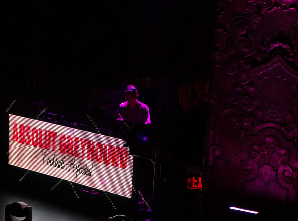 greyhound7.jpg