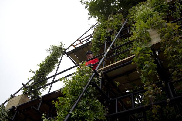 chelseaflowers-2012-0775.jpg