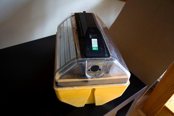 incubation-setup-2434b.jpg
