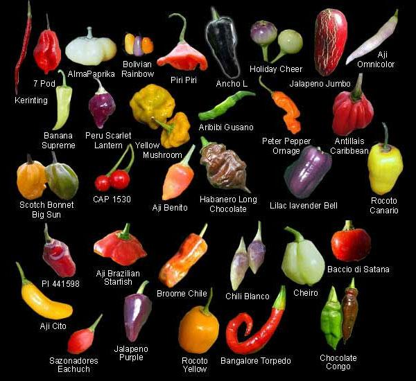 varieties.jpg