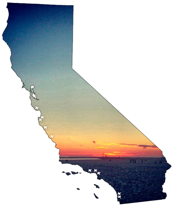 cali12.jpg