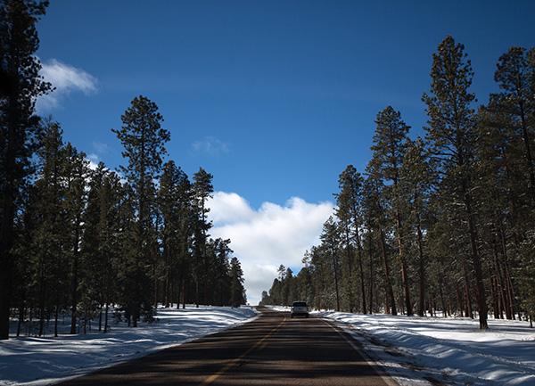 offroad-8.jpg