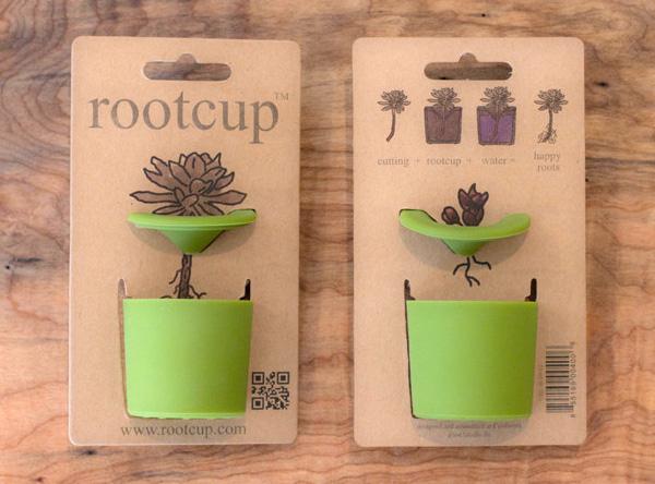 rootcup1.jpg