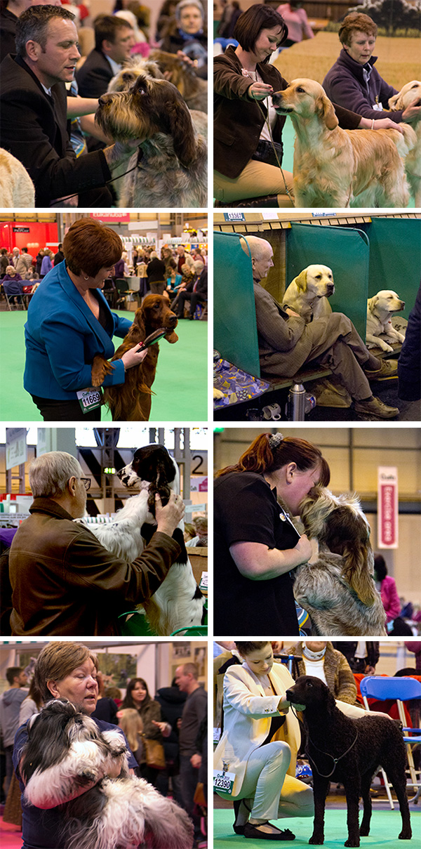 crufts-people-dogs.jpg