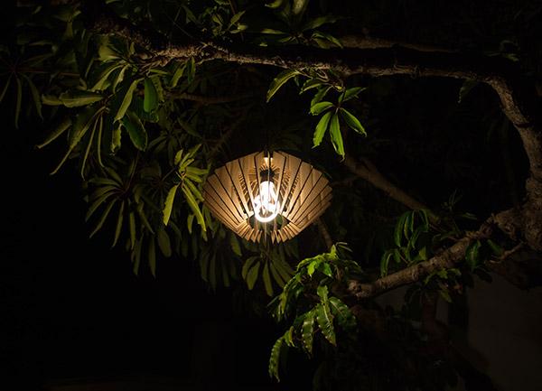 cardlamp10.jpg