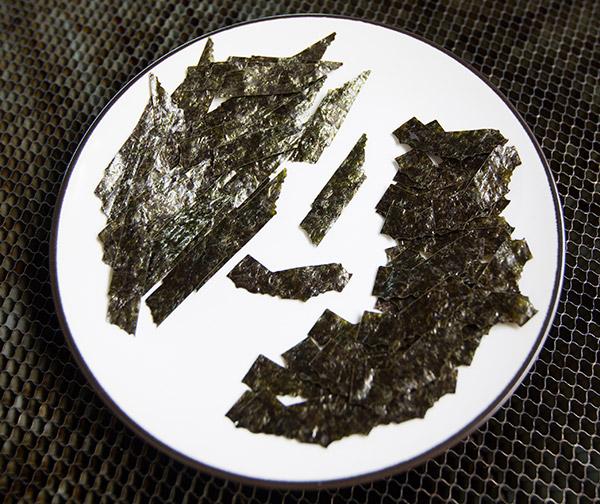 seaweedfly3.jpg