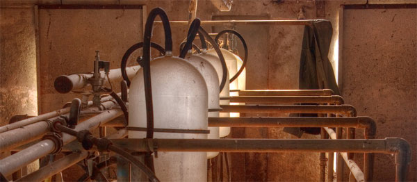milkingparlour.jpg