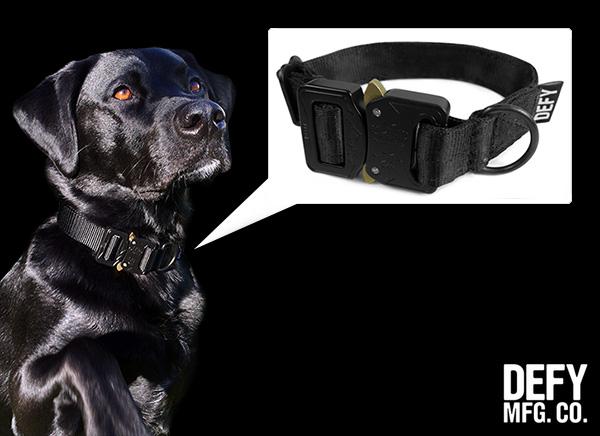Defy Bags Otis Dog Collar