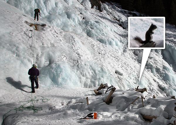 iceclimb3.jpg