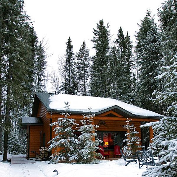 winter48.jpg