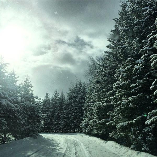 winter51.jpg