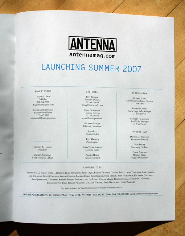 antenna8.jpg