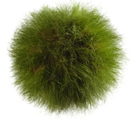 grassorb.png