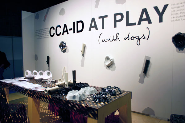 playdog1.jpg