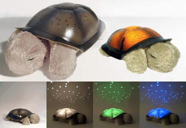 turtlestar.jpg